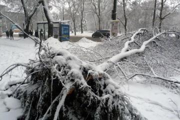 Schnee-Hammer in Odessa