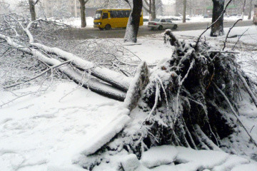Over 350 towns and villages in seven Ukrainian regions left without electricity