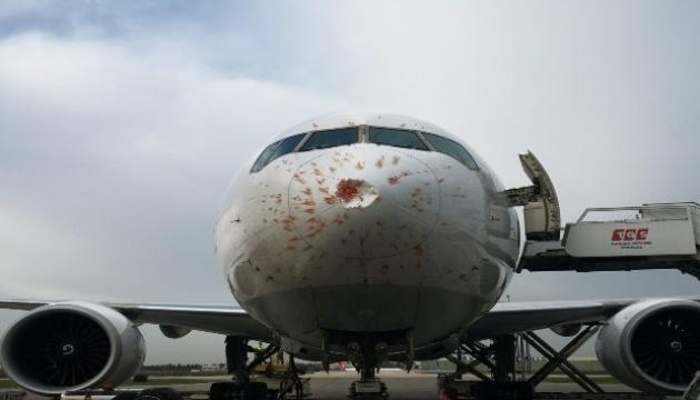 Стая птиц «посадила» самолет в аэропорту Стамбула