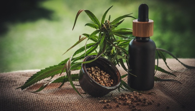 Ukraine preparing for rehabilitation of marijuana