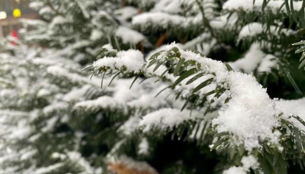 Сніг і до 9° морозу: якими будуть останні дні січня