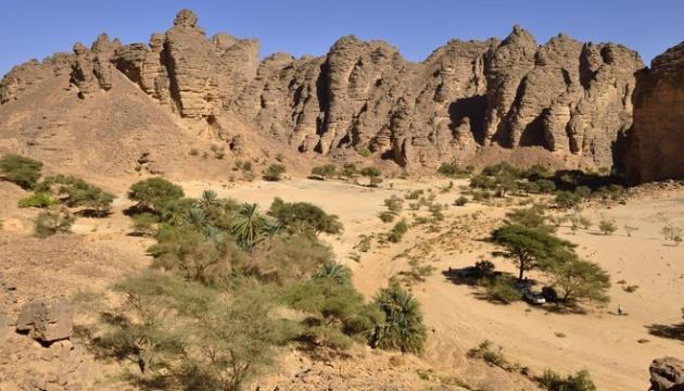 Штучний інтелект знайшов у пустелі Сахара близько 2 мільярдів дерев