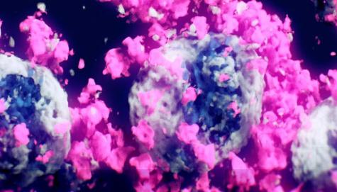 Вчені вперше зробили 3D-знімок коронавірусу SARS-CoV-2