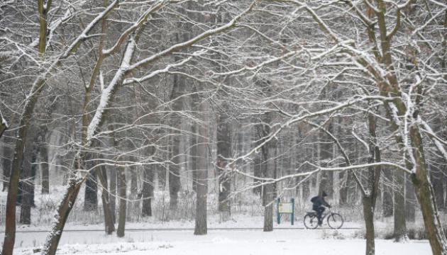 Польшу замело снегом, десятки тысяч человек - без света