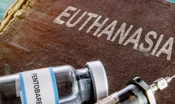 У Португалії легалізують евтаназію для невиліковно хворих