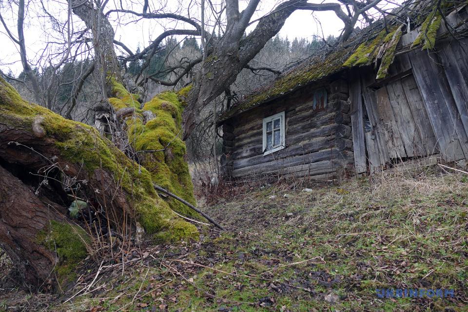 Покинута хатина у високогір'ї Карпат / Фото: Юрій Рильчук. Укрінформ