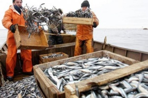 Ukraine exported over 6,000 tonnes of fish and other aquatic bioresources in Jan-July 2021