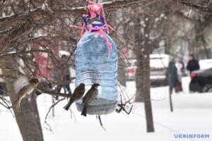 Україні прогнозують сніг і вітер: у яких областях буде найхолодніше