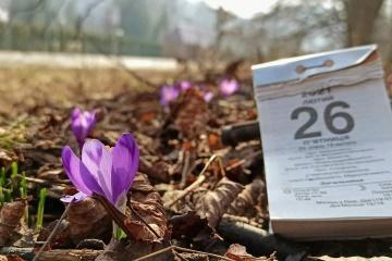 На Закарпатті розквітли перші крокуси та підсніжники