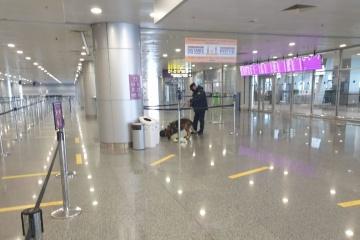 В аеропорту «Бориспіль» провели антитерористичні навчання
