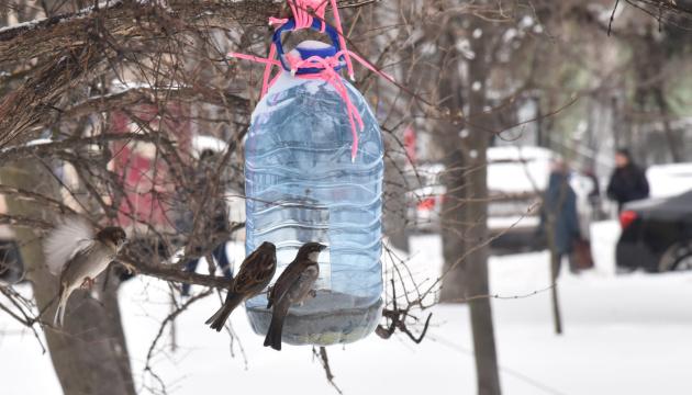 Украине прогнозируют снег и ветер: в каких областях будет холоднее всего