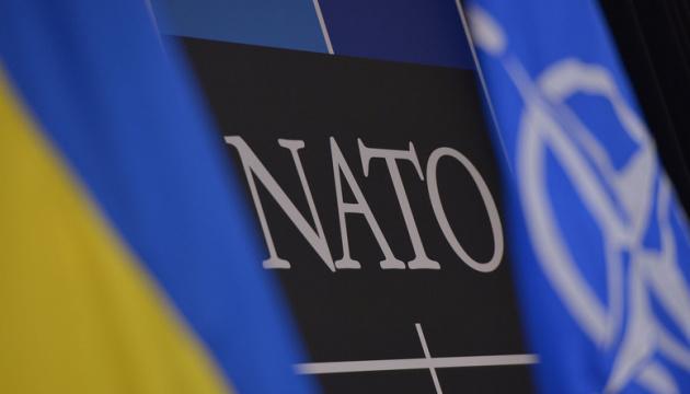 Почему Украина до сих пор не в НАТО?
