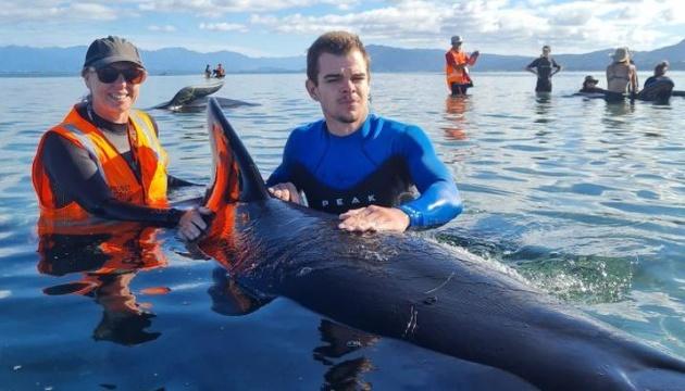 У Новій Зеландії на пляж викинулися півсотні китів-гринд