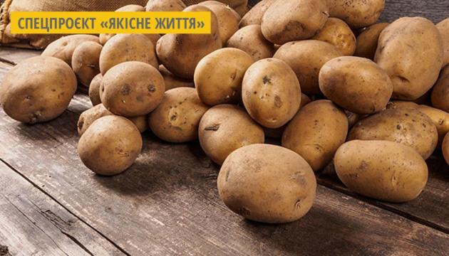 У Німеччині вивели сорти картоплі з низьким вмістом вуглеводів