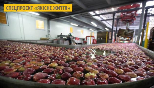 Фермерское хозяйство с Тернопольщины осваивает новый сегмент на рынке снеков