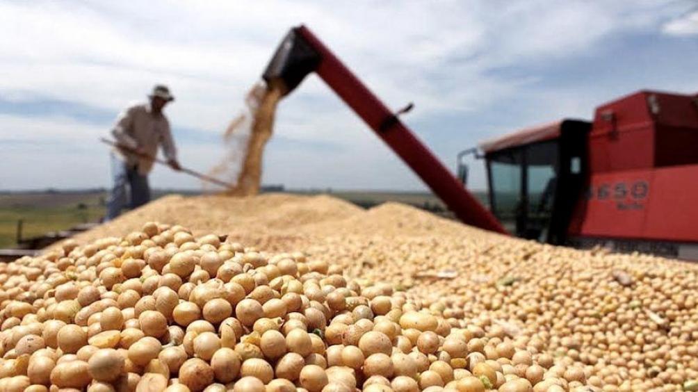 Аргентинська соя не потрапила на ринок через страйк