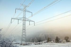 Найбільша енергетична компанія Техасу заявила про банкрутство