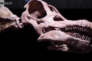 В Аргентине нашли останки самого древнего титанозавра в мире