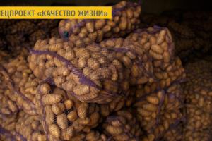 На Львовщине иностранные инвесторы планируют построить завод по переработке картофеля