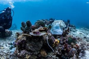 Філіппінські рифи засмітили одноразовими масками