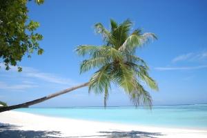 Как слетать на Мальдивы не дороже, чем в Египет