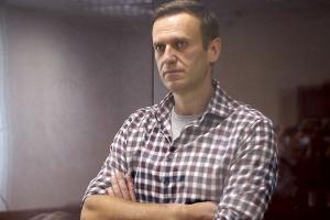 Німецькі депутати звинуватили Росію в навмисних тортурах Навального