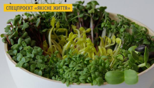Івано-Франківський фермер пропонує розпочати весну з 50 грамів мікрозелені