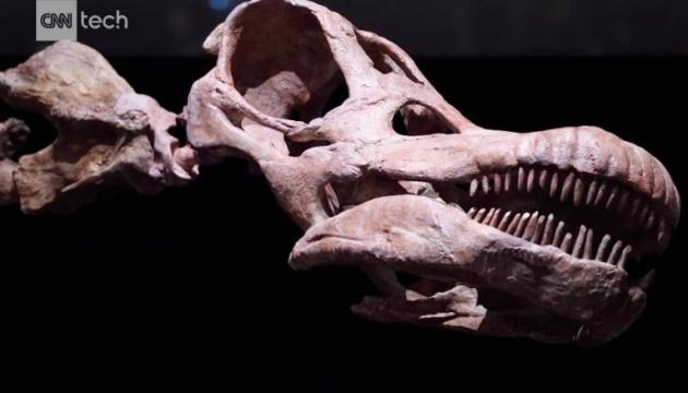 В Аргентині знайшли рештки найдавнішого титанозавра у світі