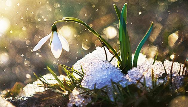 Украину прогреет до + 12°, гололед растопит весеннее солнце