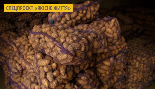 На Львівщині іноземні інвестори планують збудувати завод з переробки картоплі