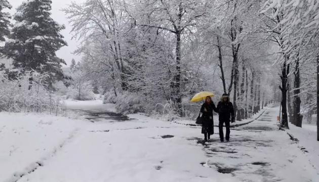 Львівщину засипало снігом