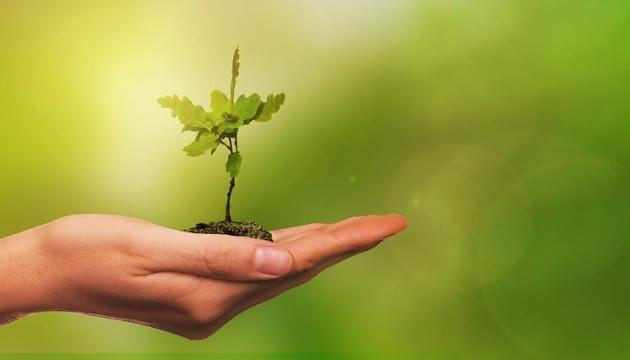 Im Rahmen des Umweltprojekts werden am 20. März in 100 Ländern eine Million Bäume in 24 Stunden gepflanzt