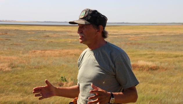 На Херсонщині знову гинуть червонокнижні птахи – директор «Асканії-Нової»