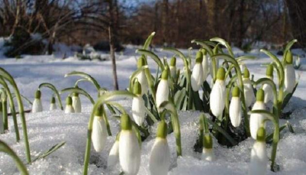 Тиждень в Україні починається зі снігу та дощу