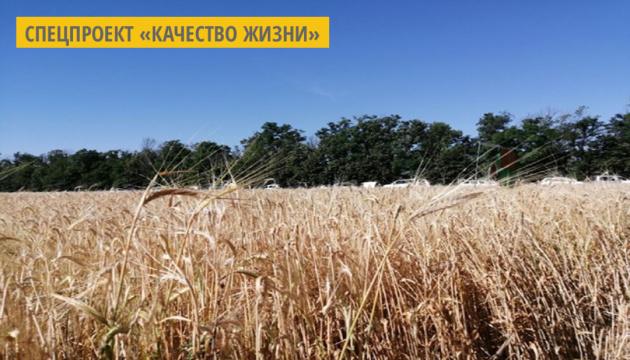 На Кировоградщине корейская компания будет инвестировать в сельское хозяйство