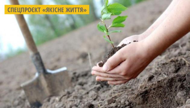 У рамках проєкту «Озеленення планети»  у 100 країнах висадять мільйон дерев за добу - МЗС