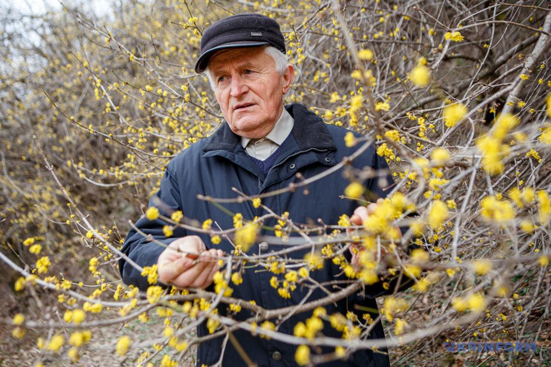 Василь Івашко
