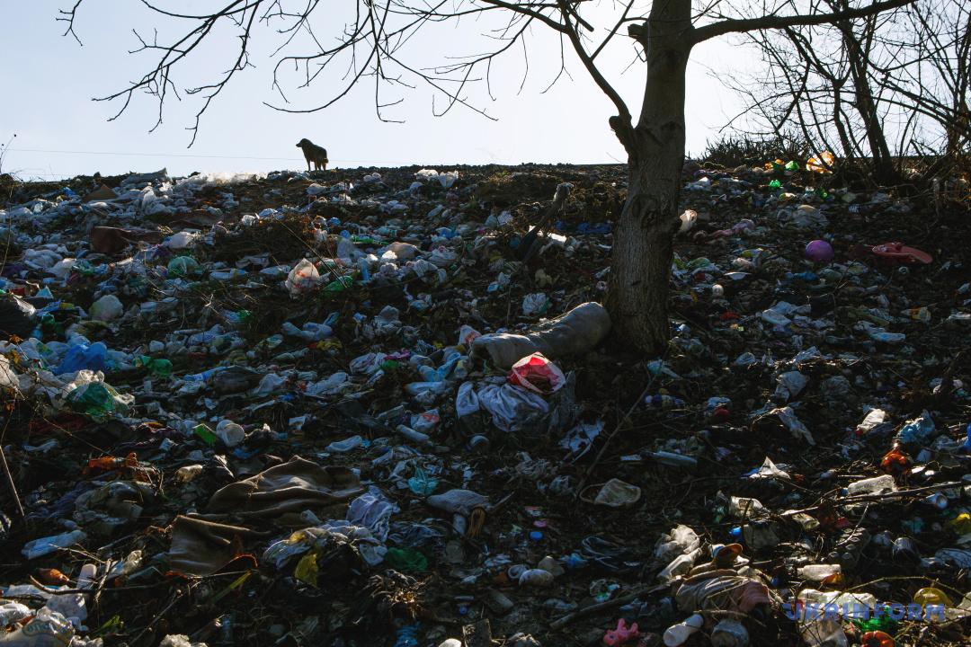 Стихійне сміттєзвалище на березі річки Уж