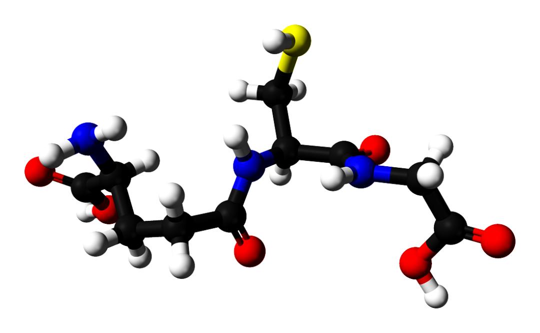 модель молекули глутатіон, C10H17N3O6S, за даними рентгенівської кристалографії