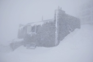 У Карпатах - сніг і хуртовина