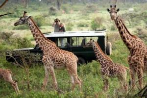 Український туроператор започаткував пряме авіасполучення з Кенією