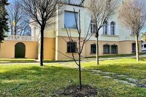 В Австрії українські дипломати висадили черешню, сливу та сакуру