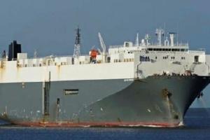 Під Стамбулом рятують 180-метрове вантажне судно, що сіло на мілину
