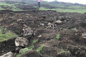 В Николаеве «черные копатели» разрыли памятник археологии античного времени