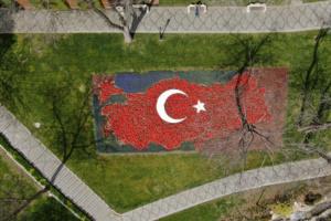 У Стамбулі висадили 8 мільйонів тюльпанів