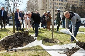 В рамках экоакции «Greening of the Planet» в Харькове высадили 20 сакур и 4 магнолии