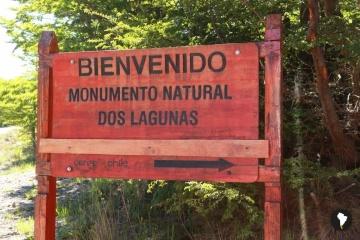 Establecen un Bosque de la Amistad entre Chile y Ucrania en la Patagonia