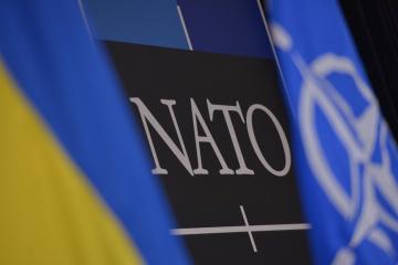 La reunión de la Comisión OTAN-Ucrania tendrá lugar a petición de Kyiv