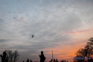 В Днипре и Запорожье выпустили на свободу 2 000 спасенных зимой летучих мышей