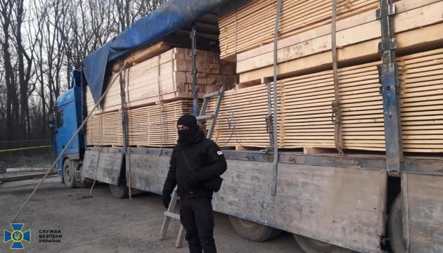 СБУ викрила схему нелегального експорту карпатської смереки на ₴15 мільйонів